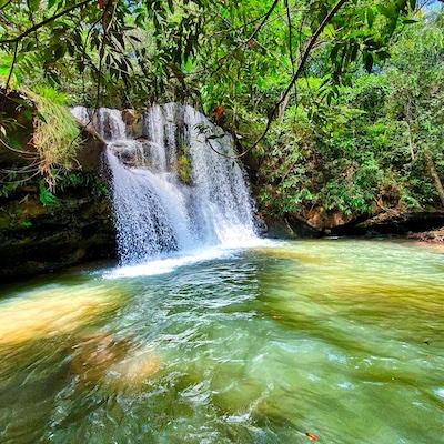 Rondonopolis Agronegocio Carima